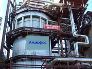Аммофос