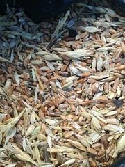 Закупівля зернових,  бобових. Закупівля некондиції,  зерновідходів